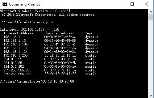 IP address and MAC address ARP -a command