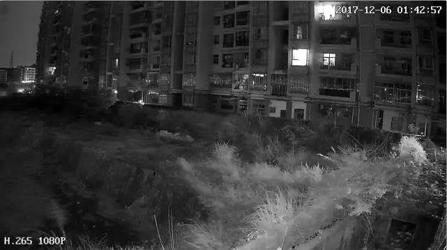 Hi3516e New Ip Camera Solution Supports 1080p H 265
