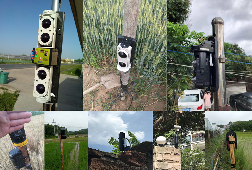 Photoelectric beams protect agriculture farms
