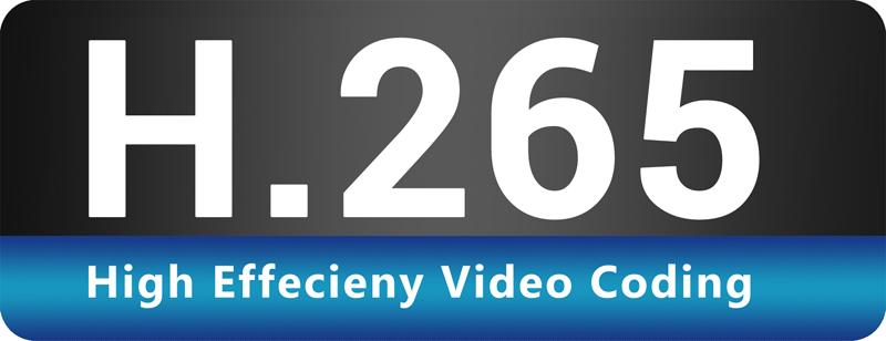 HEVC/H.264+ Logo